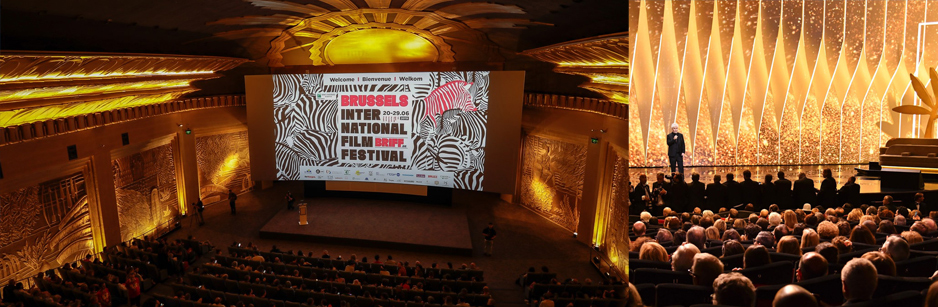 brussels international film festival 2020